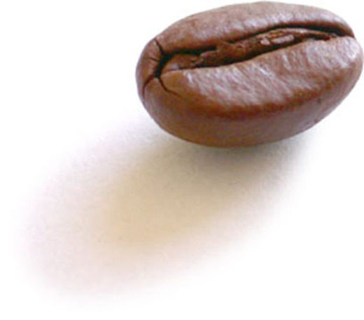 Coffee_bean_single